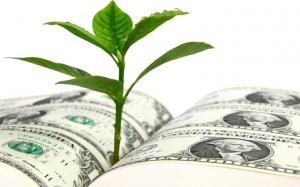CBD Fundraising Risks